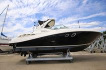 SeaRay SUNDANCER310
